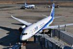 ANA、運航計画の変更を発表 6月に羽田~デリー、7月に関西~フランクフルト・シカゴ・サンフランシスコ線の臨時便を運航